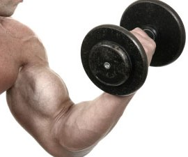 http://www.daveywaveyfitness.com/exercises/arms/blast-your-biceps-with-21s/